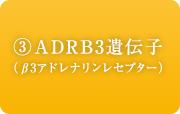 ADRB3遺伝子