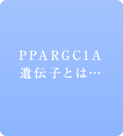 PPARGC1A遺伝子とは...